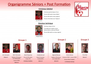 organigramme Seniors Post-formation